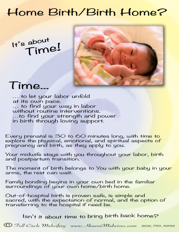Home Birth, Birth Home flier